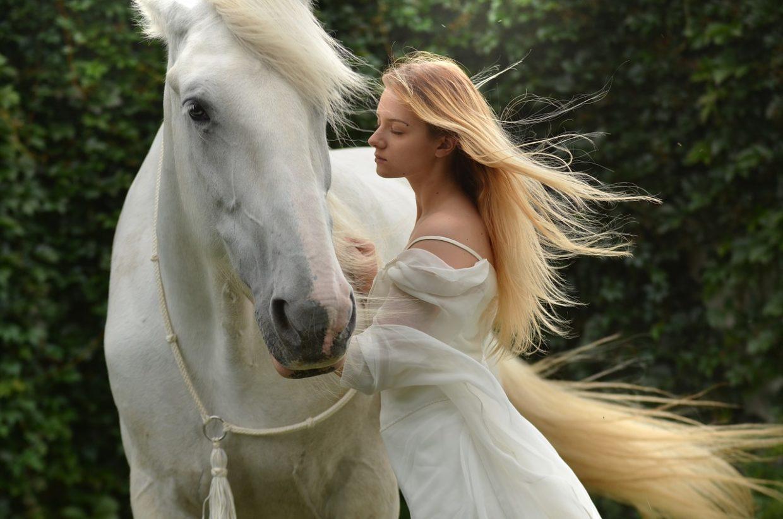 Własny koń, jak to wszystko wygląda