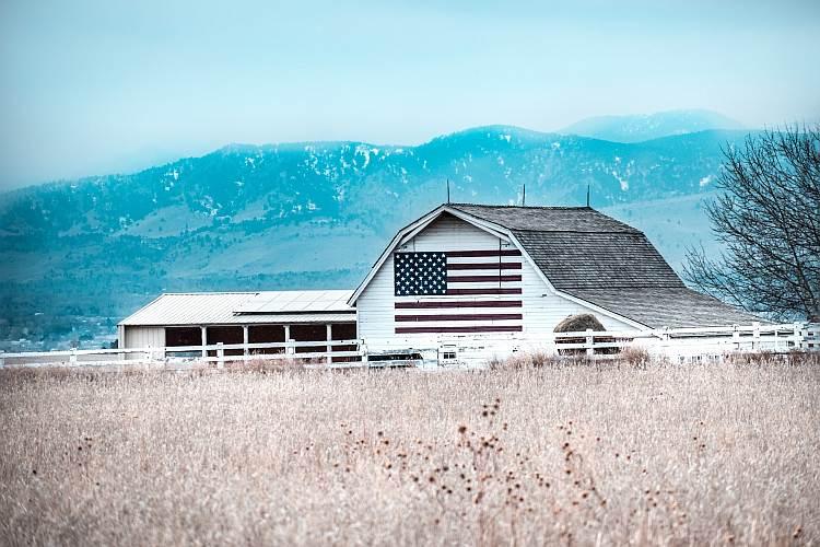 Hale namiotowe dla rolnictwa - sprawdź dlaczego to się opłaca